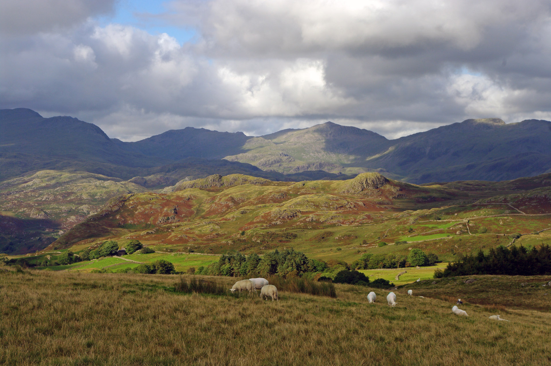 lake district land largely exposed rocky not productive enough arable crops sheep farming main use